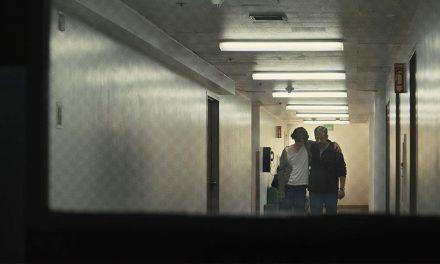 نقد سینمافا بر فیلم «پسر زیبا» (Beautiful Boy) فلیکس ون گرینینگن