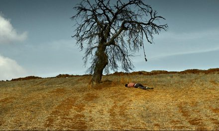 درخت گلابی وحشی نیست/ نقد سینمافا بر فیلم «درخت گلابی وحشی» (The Wild Pear Tree) نوری بیلگه جیلان