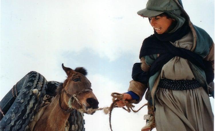 «زمانی برای مستی اسبها» جزو ۱۲ فیلم شگفت انگیز تاریخ سینمای جهان