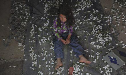 ناکامی «نفس» در ورود به جمع ۹ فیلم برتر اسکار