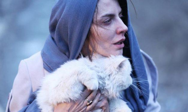 دو فیلمساز زن در فهرست چهارتایی ارسال به اسکار